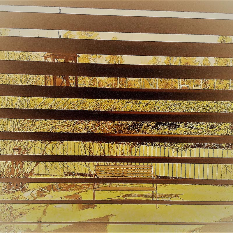 Sälekaihtimien läpi kuvattu näkymä ulos talon pihalle. Kaihtimet muodostavat maiseman päälle tumman vaakaraidoituksen. Kuva on sävytetty keltaiseksi.